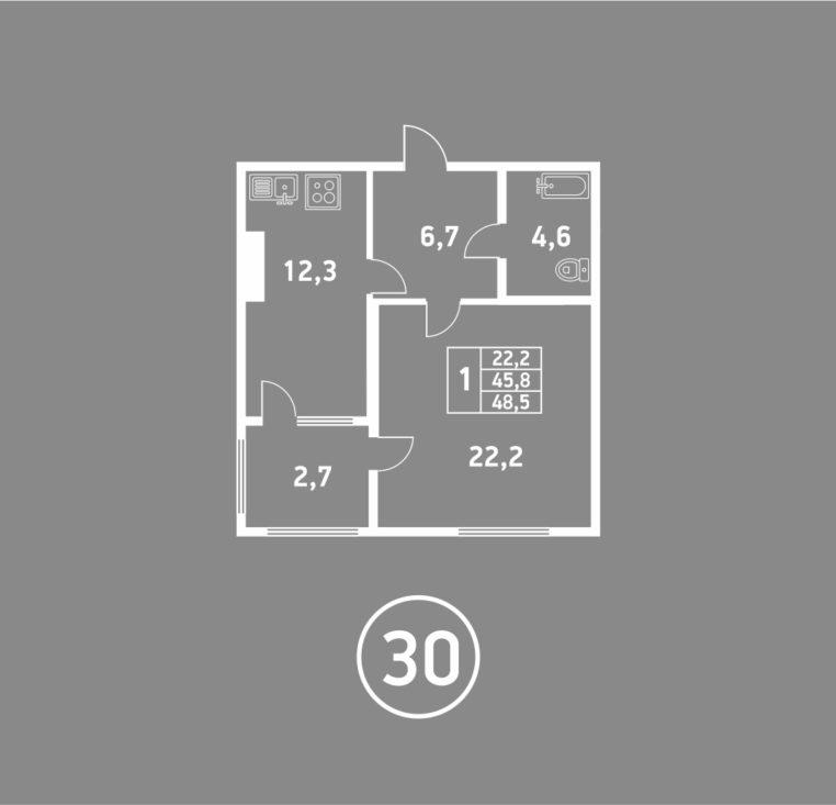1 комнатная пушкина 2